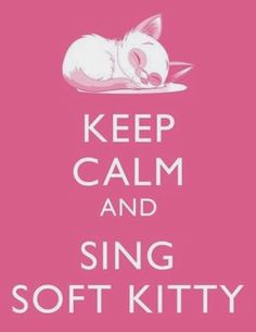 Poster Big Bang Theory Soft kitty Warm kitty Little ball of fur Happy kitty Sleepy kitty purr, purr, purr #SoftKitty #TBBT #TheBigBangTheory