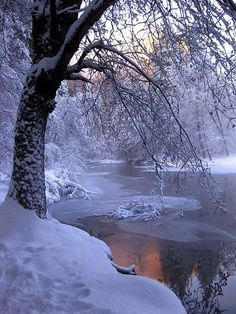 26 trendy Ideas for photography winter landscape beautiful places Winter Szenen, Winter Love, Winter Magic, Winter Sunset, Winter White, Snow White, Foto Picture, Beautiful Places, Beautiful Pictures
