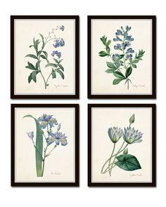 Botanical Print Set, Redoute Botanical Prints, Canvas Art, Giclee, Blue Botanical Prints, Illustration, Wall Art, Prints and Posters   $40