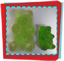 Water Works - Gummy Bear Osmosis | Canada Science and Technology Museum