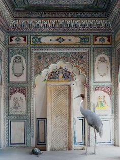 Indian Song - Karen Knorr. Rajasthani Haveli, India, with Sauras Crane
