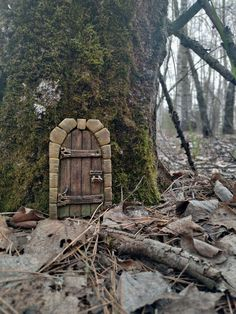 Fairy Doors On Trees, Fairy Tree Houses, Fairy Garden Doors, Fairy Village, Fairy Garden Houses, Diy Fairy Door, Garden Bed, Gnome Door, Gnome House