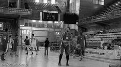 Alejandro Navajas ha demostrado su veteranía. A pesar de haber completado solo tres sesiones de entrenamiento, el malagueño ha aportado el plus ofensivo y defensivo que demandaba el equipo: 12 puntos, 9 rebotes, 2 asistencias (17 de valoración en 23 minutos). #baloncesto #basket #Lucentum #PretemporadaLucentum #Alicante #AlejandroNavajas Victoria, Alicante, Broadway Shows, Basketball Court, Training Workouts, Basketball, Cartagena, Dots