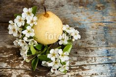 yellow pear and pear blossom on vintage wood background