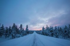 Winter in Finland is a magical experience! Here we list our top 8 recommended activities for a visit to Lapland! Stuff To Do, Things To Do, Finland, Cleaning Hacks, Kitchen Cleaning, Make It Yourself, Roads, Awesome, Winter