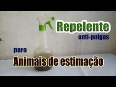 REPELENTE ANTI PULGAS NATURAL PARA SEU ANIMAL DE ESTIMAÇÃO - YouTube