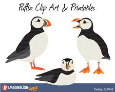 Puffin Clip Art & Printables Set / Clipart / Puffins Wall Decorations / Puffin Scrapbook / Puffin Stickers / Puffin Decals / Penguin Clipart - pinned by pin4etsy.com