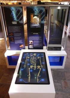 Mather & Co has created a Richard III exhibition in Leicester