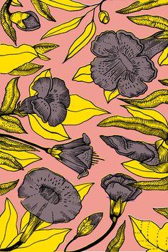 cartoon : floral : Timbergram - elenaboils illustration