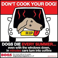 please don't leave your dogs and kids in the car on hot or even warm days