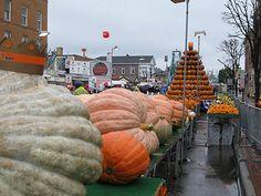 The Circleville, Ohio Pumpkin Festival