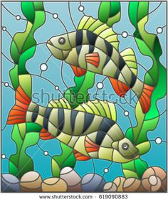 Illustration in stained glass style with a pair of fish  perch  on the background of water and algae