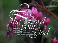 Love the Lord..