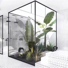 An internal courtyard in your bathroom design at its best