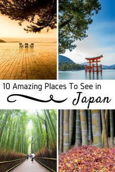 Japan is a country with a variety of places to visit and cities to explore! These are my ten favorites - places to add to your travel wish lists. Tokyo and Kyoto are certainly cities not to miss on your bucketlist vacation, but this guide includes some destinations off the beaten path, out in nature, and opportunities for gorgeous travel photography. Add these stops to your itinerary, and check out my tips for Japan! #Japan #Kyoto #Tokyo #familytravel