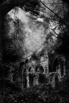 Ruins in the forest. Haunted but beautiful - Tiny Garden Cottage Ruins in the forest. Haunting but beautiful Ruins in the forest. Haunted but beautiful Abandoned Buildings, Abandoned Castles, Abandoned Mansions, Abandoned Places, Haunted Places, Beautiful Ruins, Beautiful Places, Beautiful Forest, Romantic Places