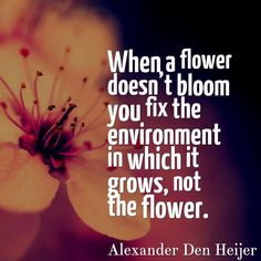 When a flower doesn't bloom you fix the environment in which it grows, not the flower. - Alexander Den Heijer