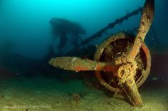 Diving Iron Bottom Sound Guadalcanal Solomon Islands shipwrecks brad sheard underwater photography World War II