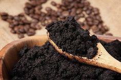 Usar café para mejorar tu jardín o huerto- café molido