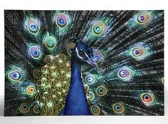 Bengal Peacock Lighted Canvas Art, Seventh Avenue