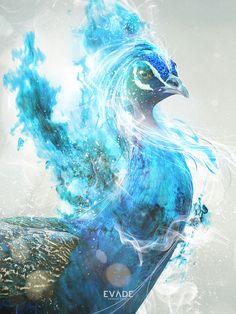 Gobalt Phoenix by So Case , via Behance