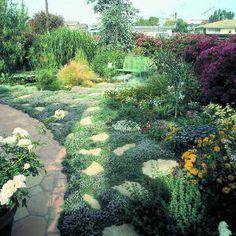 Scruffy to sensational: A garden retreat