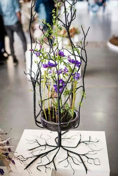 Unfortunate photo.  Should have had a clean background so the intricacy of the roots and stems are highlighted.