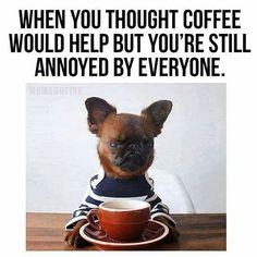 40 Hilarious Coffee Memes Moms & Dads Understand - Parentology