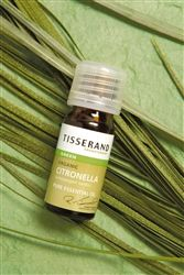 Quality Citronella Essential oil from Tisserand Aromatherapy