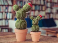 Draw Flower Patterns Crochet Cactus Patterns Best Ideas Video Instructions - You will love this collection of Crochet Cactus Patterns and we have all the most popular ideas with lots of free patterns and video tutorial included. Cactus House Plants, Small Cactus, Cactus Flower, Cactus Cactus, Cactus Drawing, Plant Drawing, Crochet Flower Patterns, Crochet Flowers, Knitting Patterns