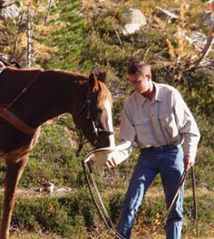 Great Tips Your Horse Will Love You For