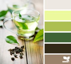 best feng shui kitchen colors east