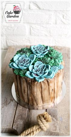 Succulent cake - cake by Cake Garden Houten Mini Cakes, Cupcake Cakes, Cake Decorating Piping, Decorating Tips, Cricut Cake, Dad Cake, Surprise Cake, Garden Cakes, Floral Cake