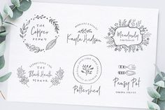 Poppit & Finch Fonts & Illustrations by Nicky Laatz on @creativemarket