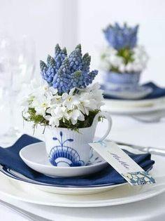 grape hyacinth in a teacup