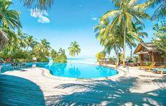 Maldives Luxury Resorts - Vilu Reef Beach and Spa Resort  #bmrtg #warrenjc #Maldives #vilureefbeachandspa #AsiaTravel #WorldTravelGuide #马尔代夫 #中国  #sunnysideoflife #maldivity #travel #traveling #vacation #dive #surfing #adventureculture #instagood #india #holiday #fun #lagoon #beach #instapassport #instatraveling #mytravelgram #travelgram #igtravel #CrystalClearWater #LonelyPlant #adventure