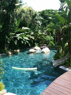 Beautiful jungle pool