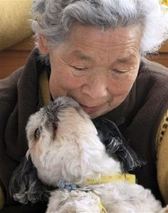 A year after the earthquake and tsunami hit Japan's coastal city of Miyako, one elderly woman has her loyal Shih Tzu to thank for being alive. Eighty-three year old Tami Akanuma says her dog, Babu, rescued her life during the March 11, 2011 earthquake.
