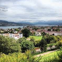View from restaurant Etzliberg in Thalwil #swissspots