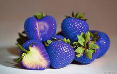#Blue #strawberries MSO.fi