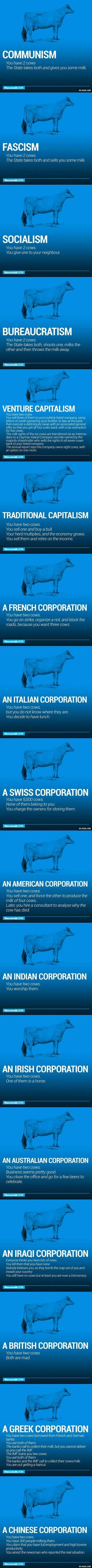 World politics explained through cows