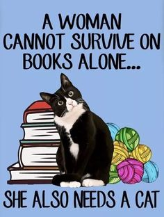 Cat Quotes, Animal Quotes, Funny Cat Memes, Funny Cats, Crazy Cat Lady, Crazy Cats, Animals And Pets, Funny Animals, Cat Posters