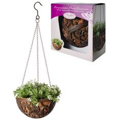 Fallen Fruits Butterfly Hanging Basket | Wayfair UK