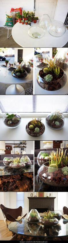 DIY-Home-Decor: DIY Terrarium.  I am so doing this for my back patio.