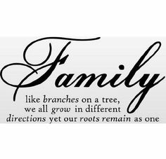 Fashion DIY Family Tree Together Love Wall Vinyl Sticker Decal Quote Decor Art Wall Paper