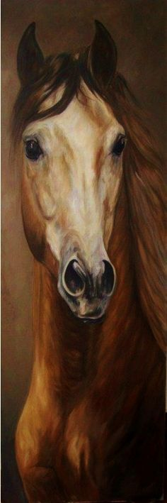 Modern Oil Painting: Paintings of horses – Maureen Hassen – Join the world of pin Pretty Horses, Beautiful Horses, Horse Drawings, Art Drawings, Art Occidental, Painted Horses, Horse Artwork, Horse Portrait, Animal Paintings