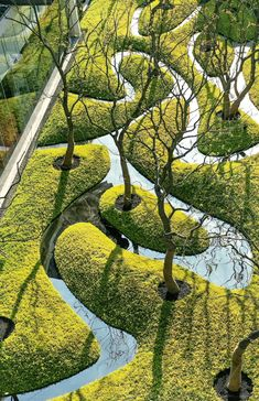Landscape Elements, Landscape Architecture Design, Architecture Plan, Urban Garden Design, Dream Pools, Green Park, Exterior, Parks, Garden Art