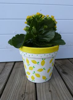 P1080293 Deco, Planter Pots, Blog, Garden, First Mothers Day Gifts, Lemon, Decor, Blogging, Deko