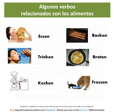 Listado de algunos verbos relacionados a la alimentación