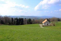 Uetliberg, Zurich, Switzerland Switzerland, Explore, Mountains, Nature, Travel, Naturaleza, Viajes, Destinations, Traveling